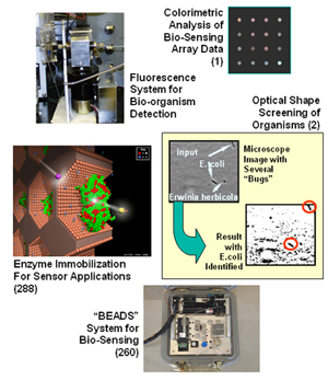 Photo collage with links to biological sensor technologies